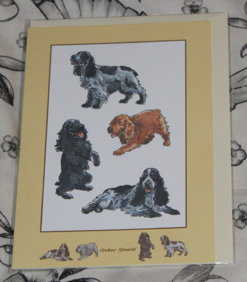 COCKER SPANIEL GREETINGS CARD with pictures of the breed